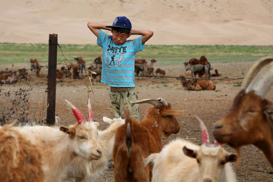 羊飼いの少年の1日の始まり