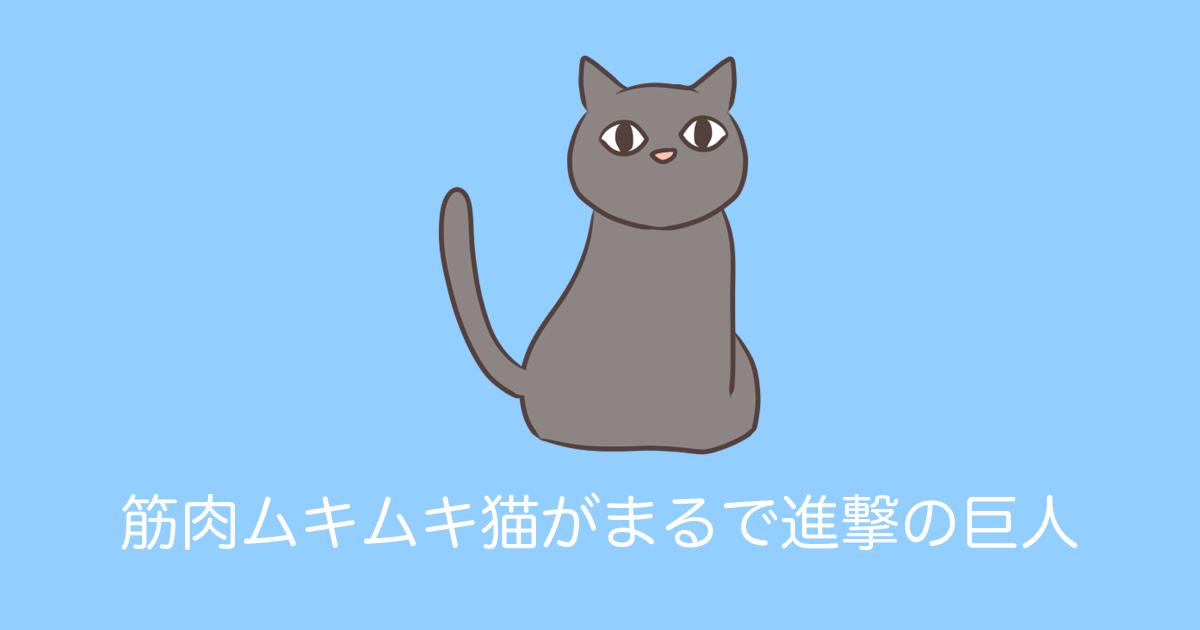 筋肉ムキムキ猫がまるで進撃の巨人