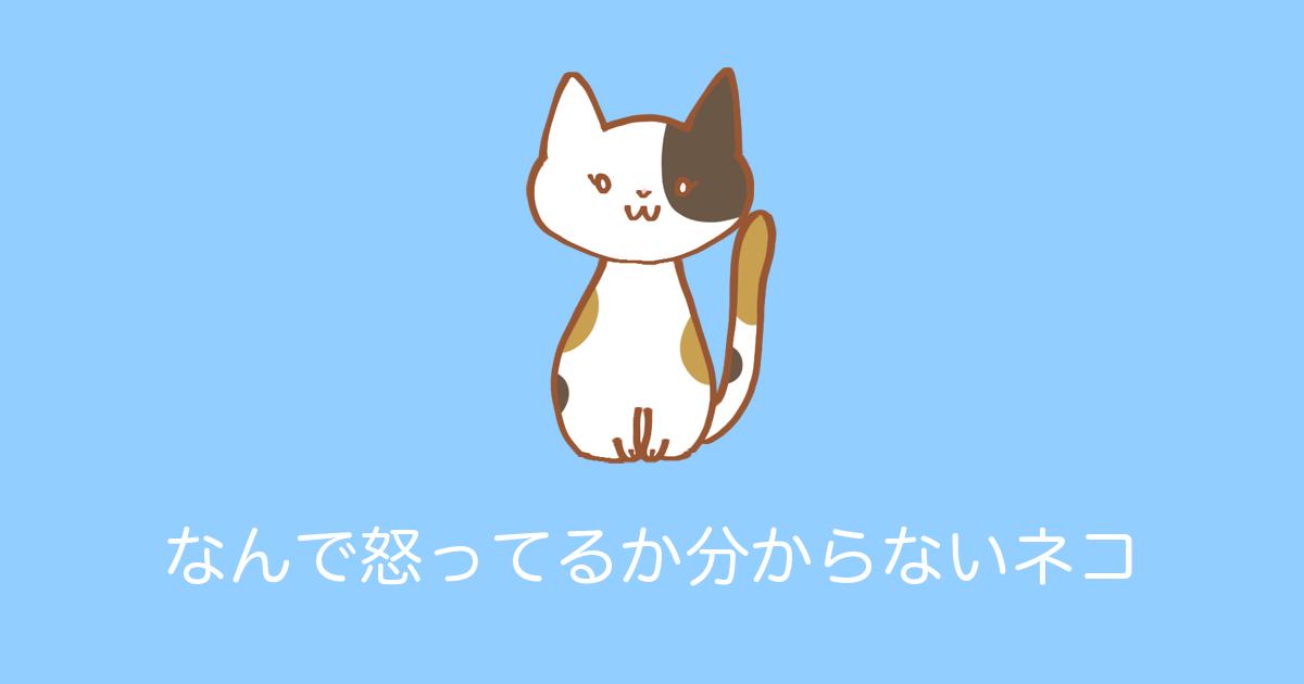 なんで怒ってるか分からないネコ