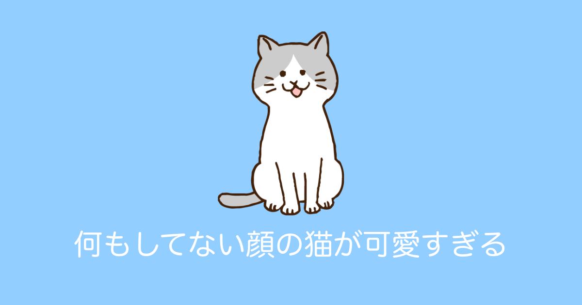 何もしてない顔の猫が可愛すぎる