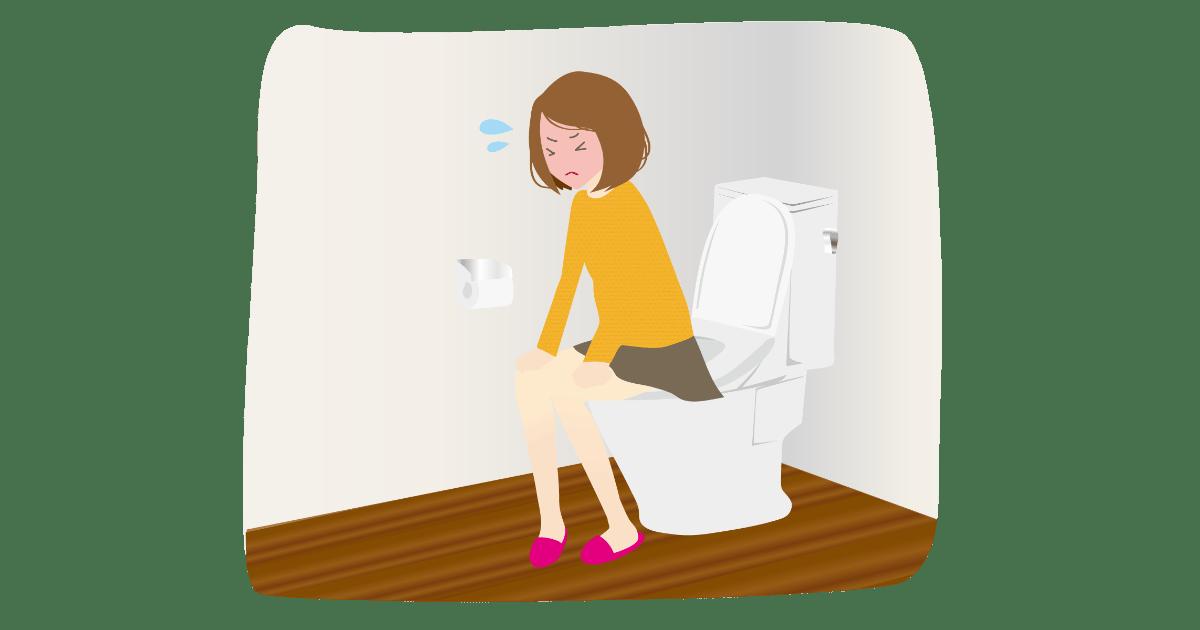 難易度が高すぎるトイレ