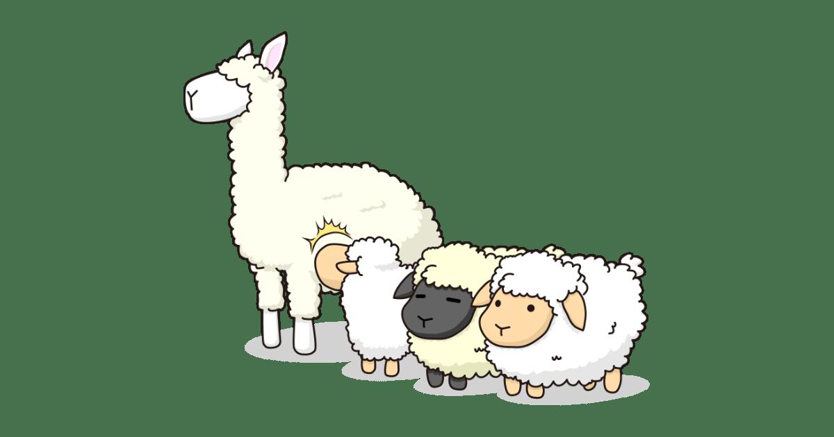 羊とアルパカ
