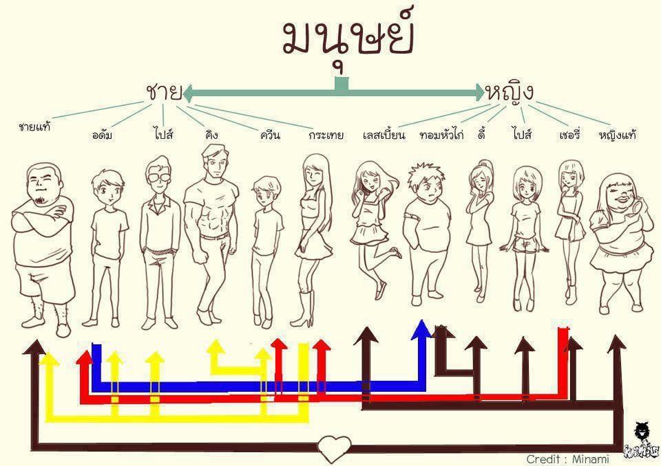 タイの性別の分類(タイ語版)