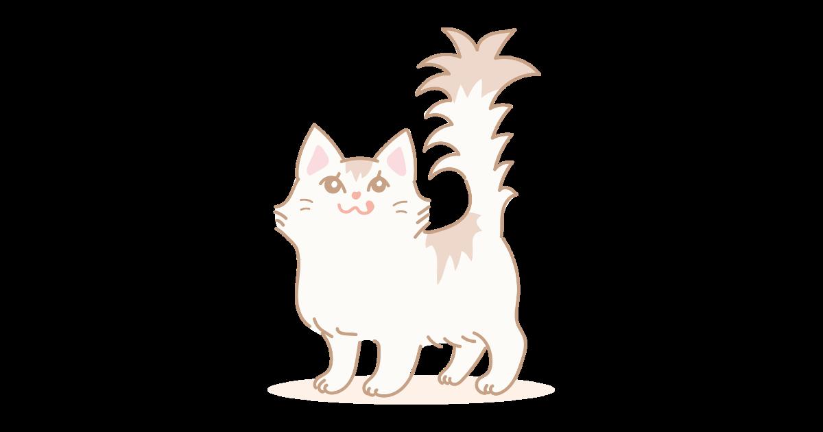 ミヌエット(ネコ)